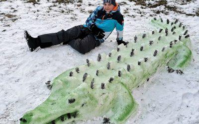 Krokodil iz Hotinje vasi